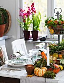 Set table with autumnal arrangement of ornamental squash, cake stand and candles