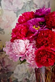 Magnificent bouquet of peonies in shade of red and pink against floral wallpaper