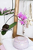 Potted orchid and cosmetic jar on stacked towels; jewellery on rack in background