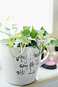 Ivy planted in coffee mug with lettering on bathroom windowsill