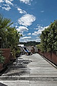 Foliage plants and sun loungers on narrow wooden terrace under blue sky