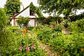 Paved path leading through flowering garden to simple house with climbing plants on facade