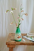 Green vintage vase of wild flowers (bladder campion) on rustic wooden stool in front of white linen curtain