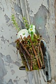 White ranunculus in jam jar covered in twigs and moss attached to door with peeling paint
