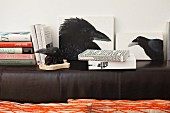 Picture of crow, picture of rook and stacked books on backrest of black leather couch
