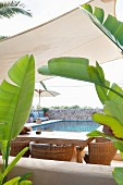 Table and wicker chairs below awning next to pool with banana leaves in foreground