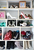 Collection of shoes, bags and framed, mounted butterfly on open-fronted shelves