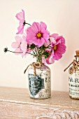 Cosmea in vintage perfume bottle