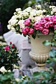 Spray roses in stone urn