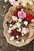 Roses in birdbath