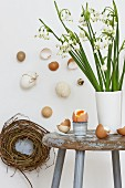 Spring snowflakes and eggs on old wooden stool; Easter wall decoration with wicker nest and various undyed eggshells