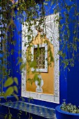Jardin Majorelle in Marrakesh – an elaborately decorated window in a wall painted the city's own bright blue shade (bleu majorelle)