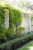 Planter on stone plinth between low hedge and climber-covered garden wall
