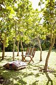 Bodenkissen und schlichter Klappstuhl aus Holz mit Streifenbezug in sommerlichem Garten