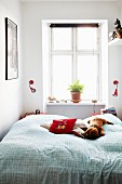 Scatter cushions and soft toys on double bed in front of potted plant on windowsill