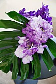 White and purple orchid and leaf in vase