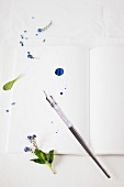 Forget-me-nots and ink pen on blank page of book spattered with ink