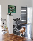 Minimalist counter and bar stools; dog in open-plan foyer in modern interior