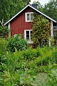 Wooden cabin in densely planted garden