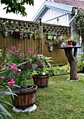 Garden with flowering plants in planters on lawn and hung on fence