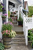Flowering plants in wooden planter at foot of steps leading to veranda with white, wooden balustrade