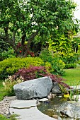 Pond with large boulder on edge in summery garden