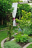 Flowerbed and gathered, white lace curtain hanging from pergola in garden