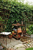 Rusty metal trellis and terracotta pots on shelves against tall garden hedge