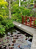 Cat ornament on wooden bridge with Oriental balustrade over lily pond