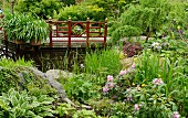 Wooden bridge with Oriental balustrade over pond with densely planted margins