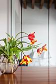 Tulpenstrauss mit rotgelben Blüten in Kugelvase auf Edelholztisch