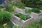 Raised beds in summery garden