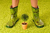 Woman wearing wellington boots on lime green carpet and miniature potted lollipop tree