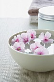 Flowers floating in white bowl of water