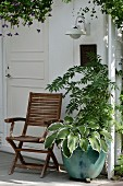 Teak folding chair next to Rowan tree and hostas in glazed, turquoise pot on front veranda