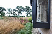 Various ornamental grasses in garden of contemporary house with glass and steel bay window with grey-painted frame