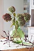 Verblasste Hortensien in einer Blumenvase auf Küchentisch