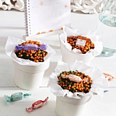 Small gifts or table decorations; potted coral bead plants wrapped in white tissue paper and decorated with wrapped sweets