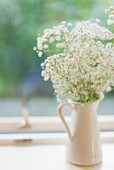 Baby's breath in jug on windowsill