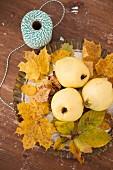 Herbstliches Stillleben mit Quitten auf Ahornlaub in Kuchenform, seitlich Garnrolle