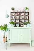 Herbs and kitchen utensils arranged on vintage, lime-green dresser