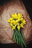 Bunch of fresh daffodils on brown paper seen from above