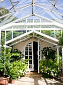 Steel and glass conservatory with arched doorway leading to country house; flowering potted roses