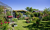 Greenhouse and Scandinavian summer houses in flowering garden under blue sky