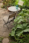 Garden chairs and table on terrace surrounded by beds of foliage plants