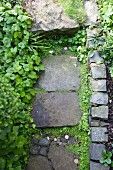 Detail of stone-flagged garden path edged in cobbles
