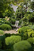 Wooden chairs and table on paved area in garden