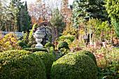 Angelegter Garten mit formgeschnittenen Buchsbaumkugeln und antik griechisches Steingefäss auf Stele