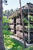 Bundles of brushwood on wooden rack in garden