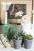Stillleben aus Sukkulenten in verziertem Topf und Vintage Kinderschuhe, im Hintergrund weisse Ranunkeln in Vase